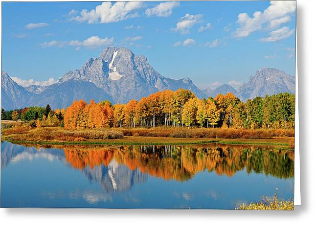 Grand Tetons Greeting Cards - Autumn Reflections Greeting Card by Greg Norrell