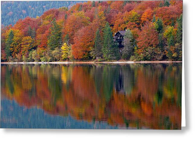 Bohinj Lake Greeting Cards - Autumn Reflections on Lake Bohinj in Slovenia Greeting Card by Greg Matchick