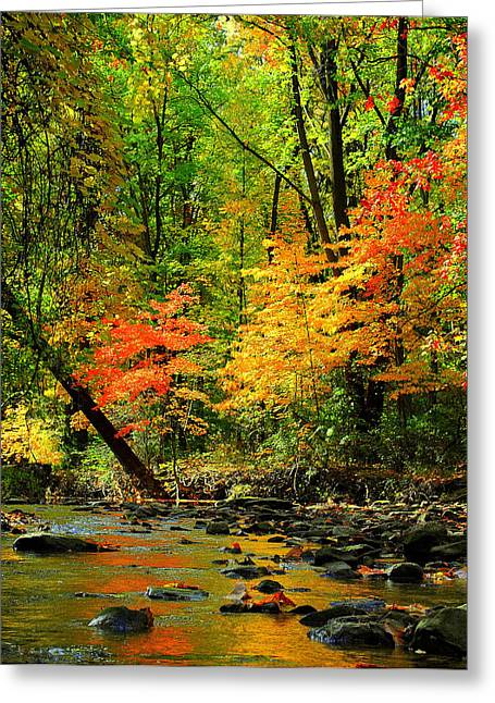 Autumn Reflects Greeting Card by Frozen in Time Fine Art Photography