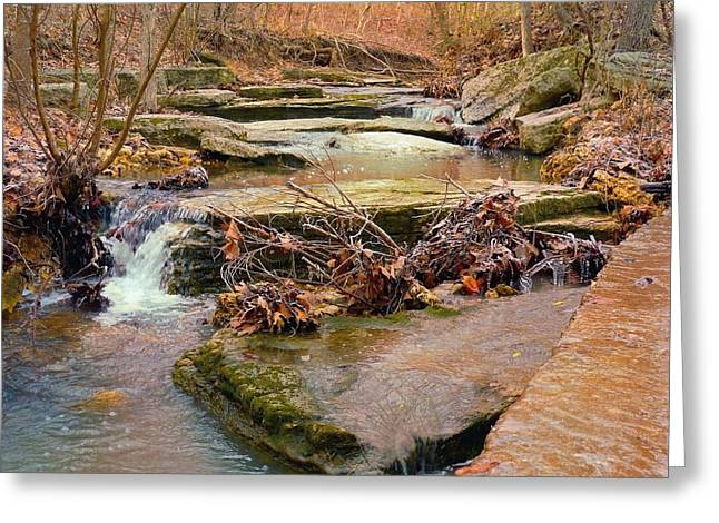 Twigs Greeting Cards - Autumn River Greeting Card by Felix Concepcion