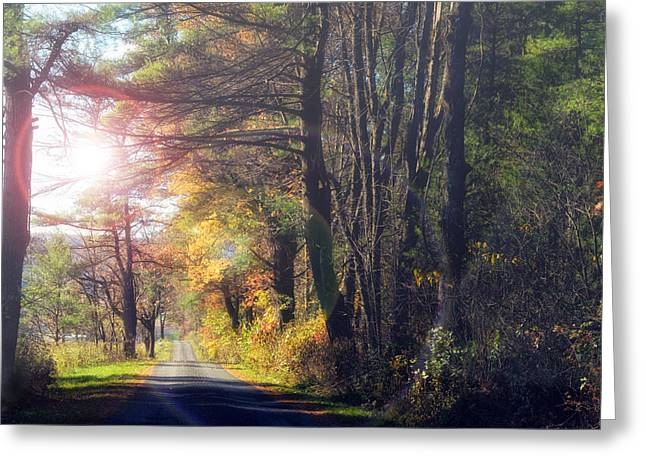 Haze Greeting Cards - Autumn Road Greeting Card by Mark Papke