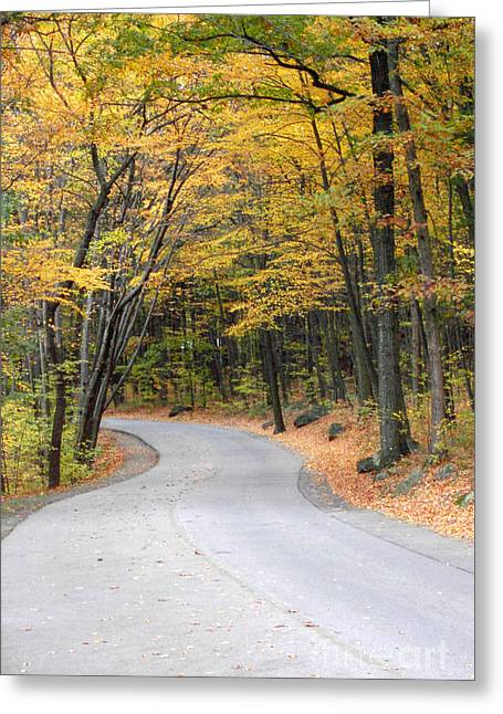 Roadway Greeting Cards - Autumn road Greeting Card by Mike Nellums