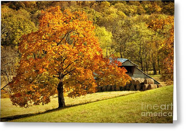 Tennessee Hay Bales Greeting Cards - Autumn Rustic Barn Greeting Card by Cheryl Davis