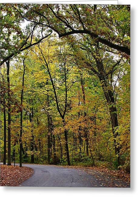 Oregon Illinois Greeting Cards - Autumn Sensation Greeting Card by Bruce Bley
