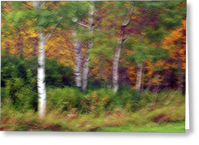 Autumn Art Greeting Cards - Autumn Shiver Greeting Card by Bill Morgenstern