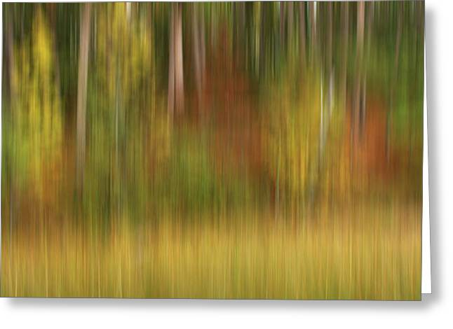 Clubhouse Greeting Cards - Autumn Shore Greeting Card by Bill Morgenstern
