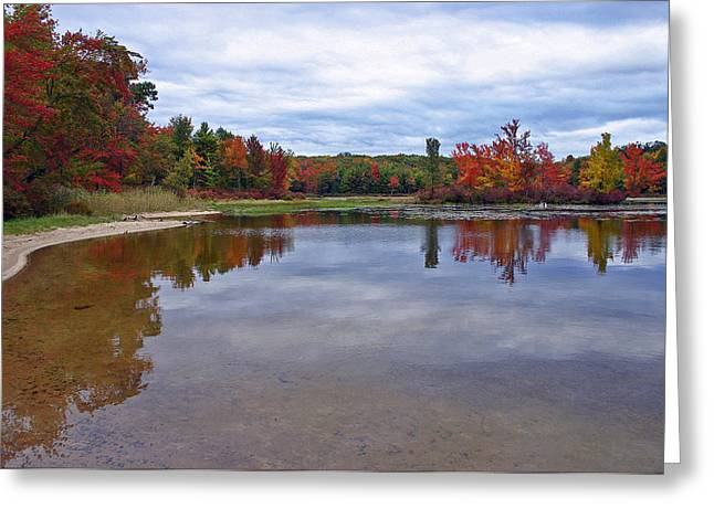 Promised Land Greeting Cards - Autumn Shoreline Greeting Card by David Rucker