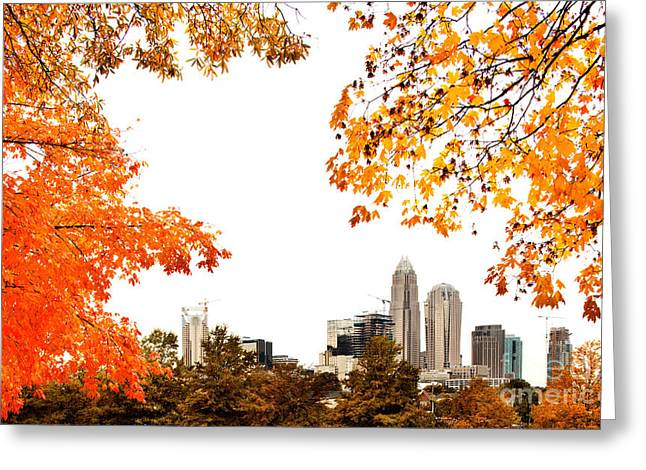 Mecklenburg County Greeting Cards - Autumn skyline Greeting Card by Patrick Schneider
