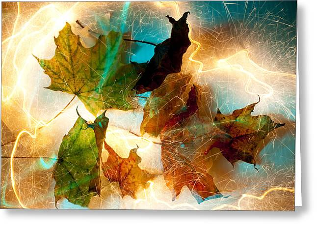 Unique Image Greeting Cards - Autumn Spectacular Greeting Card by Barbara  White