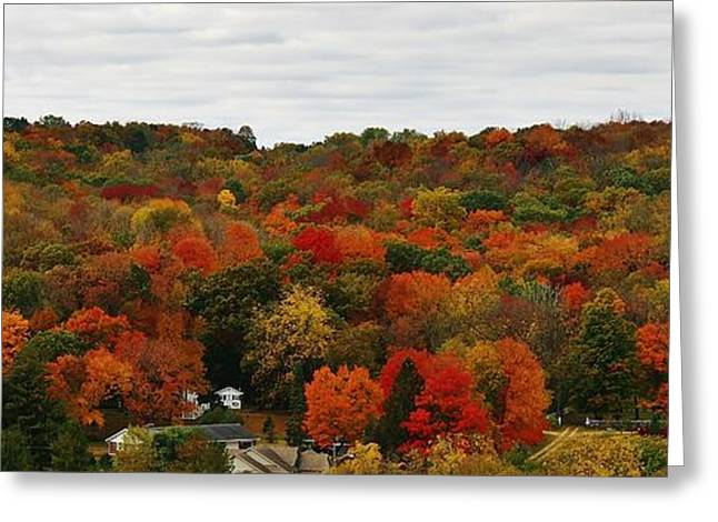 Oregon Illinois Greeting Cards - Autumn Spectacular Greeting Card by Bruce Bley