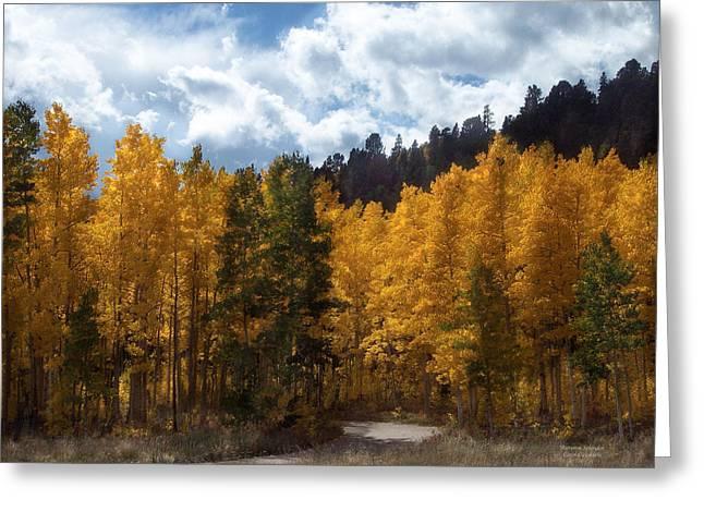 Autumn Landscape Mixed Media Greeting Cards - Autumn Splendor Greeting Card by Carol Cavalaris