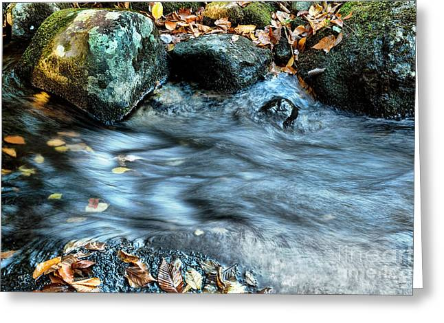 Red Leaves Greeting Cards - Autumn Stream Greeting Card by HD Connelly