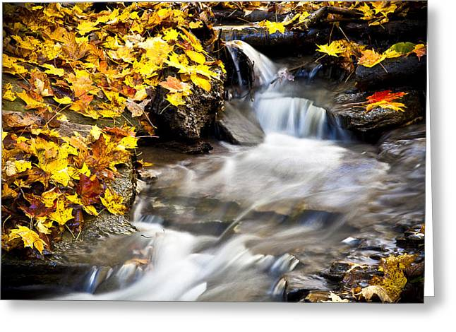 No 3 Greeting Cards - Autumn Stream No 3 Greeting Card by Kamil Swiatek