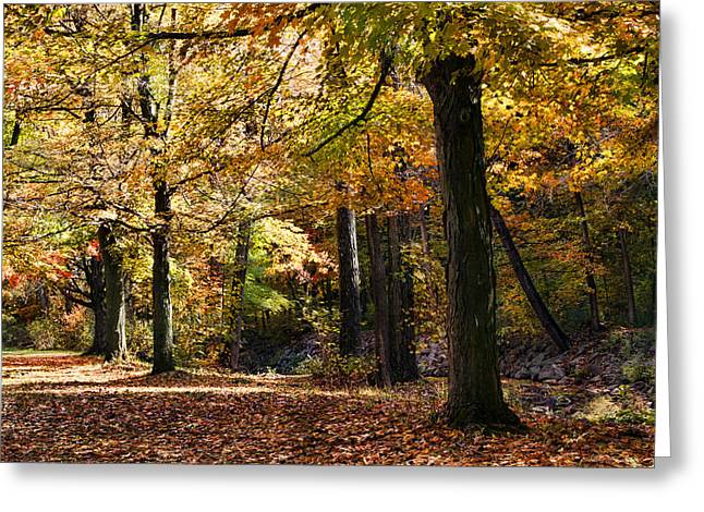Akron Greeting Cards - Autumn Stroll Greeting Card by Peter Chilelli