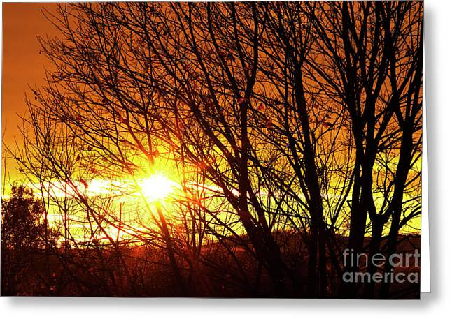 Cheerless Greeting Cards - Autumn Sun Greeting Card by Michal Boubin
