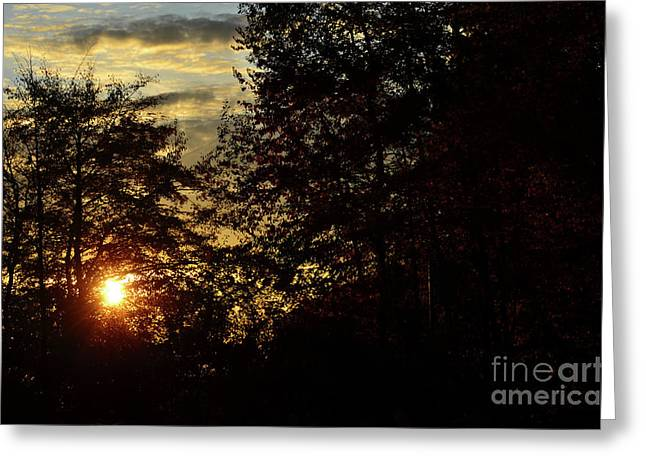 Photos Of Autumn Greeting Cards - Autumn Sunset 1 Greeting Card by Bruno Santoro