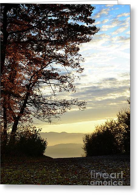 Autumn Sheets Greeting Cards - Autumn Sunset 2 Greeting Card by Bruno Santoro