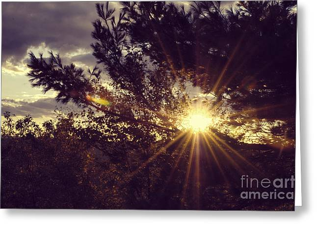 Beautiful Fall Sunset Greeting Cards - Autumn Sunset #5 Greeting Card by HD Connelly