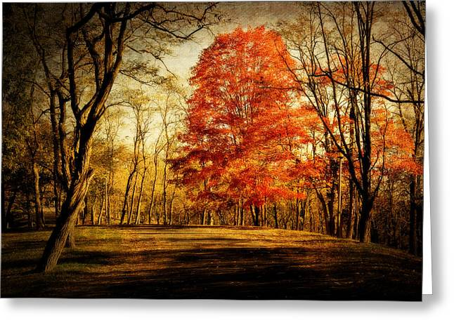 Autumn Trail Greeting Card by Kathy Jennings