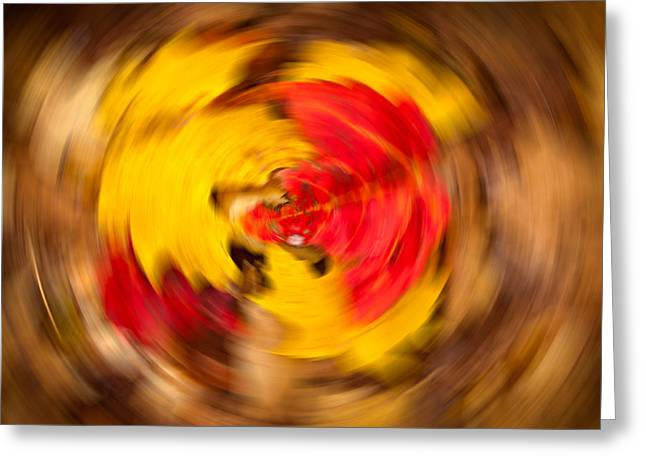 Circling Greeting Cards - Autumn Trance Greeting Card by Matt Dobson
