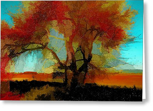 Fall Photos Mixed Media Greeting Cards - Autumn Tree Greeting Card by Bonnie Bruno