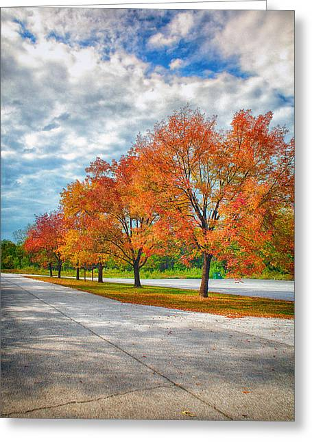 Autumn Trees At Busch Greeting Card by Bill Tiepelman