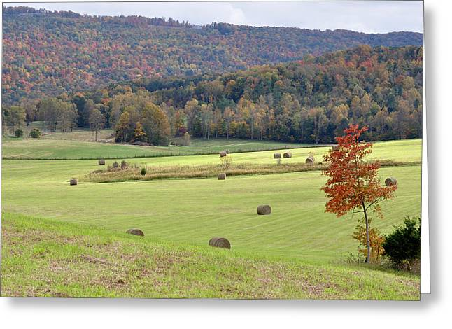 Hay Bales Greeting Cards - Autumn Valley Hay Bales Greeting Card by Jan Amiss Photography