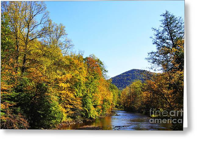 Rushing Stream Greeting Cards - Autumn Williams River Greeting Card by Thomas R Fletcher