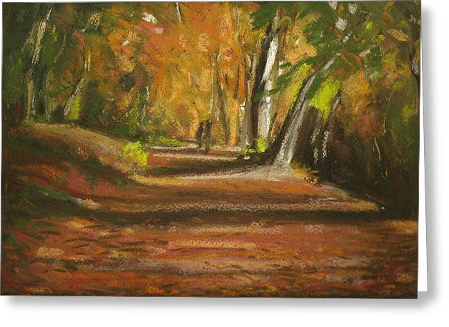 Autumn Woods 4 Greeting Card by Paul Mitchell