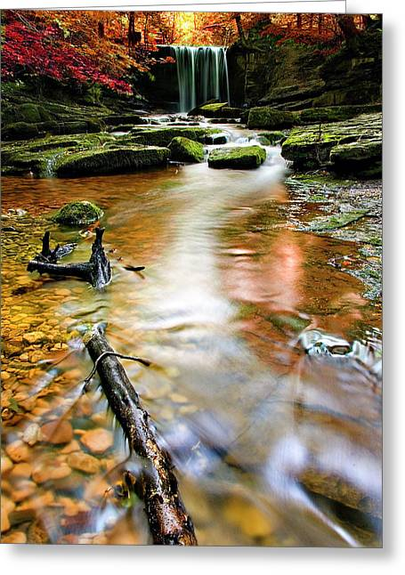 Wilderness Greeting Cards - Autumnal Waterfall Greeting Card by Meirion Matthias