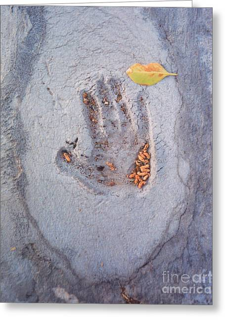 Heather Kirk Greeting Cards - Autumns Child or Hand in Concrete Greeting Card by Heather Kirk