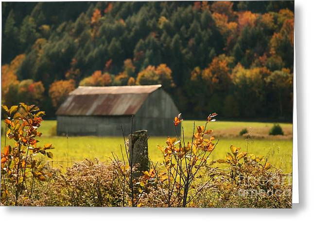 Barn Yard Greeting Cards - Autumns colors Greeting Card by Sandra Cunningham