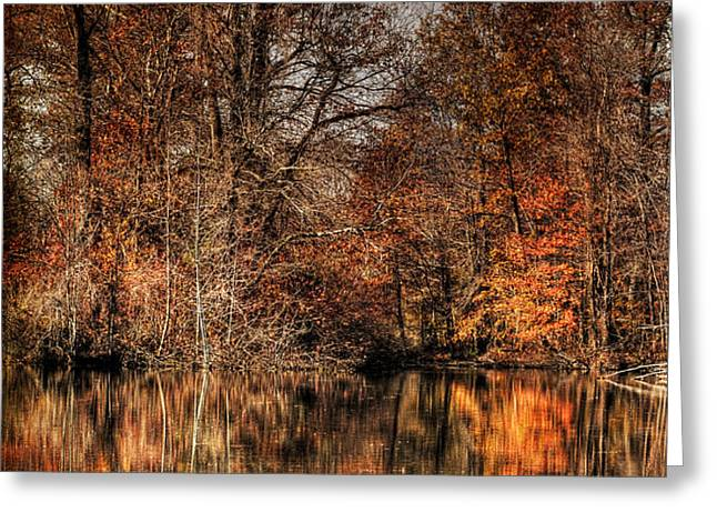 Autumn's End Greeting Card by Paul Ward