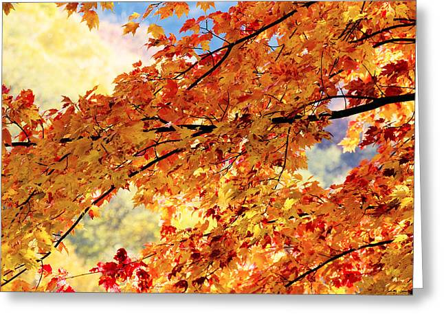 Gatlinburg Tennessee Greeting Cards - Autumns Gold Great Smoky Mountains Greeting Card by Rich Franco
