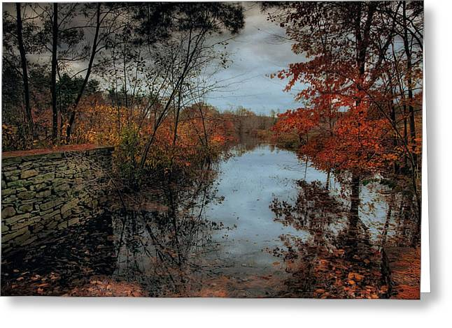 Stonewall Greeting Cards - Autumns Last Breath Greeting Card by Robin-lee Vieira