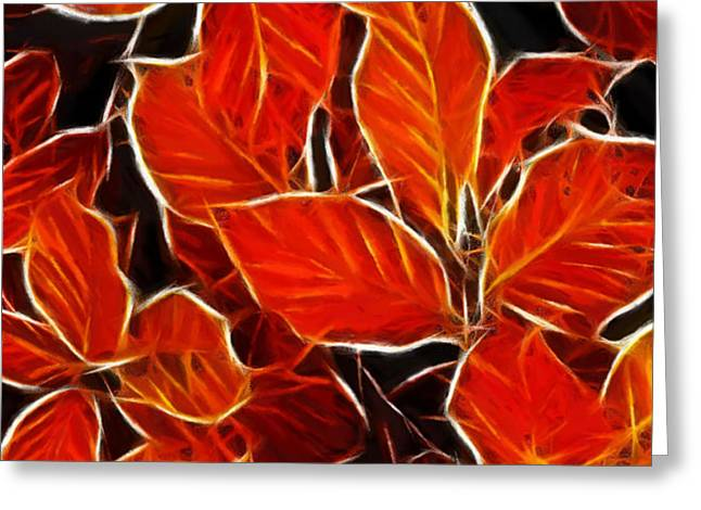 Autums blood Greeting Card by Stefan Kuhn