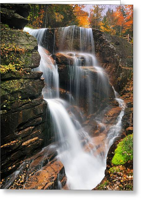 """autumn Foliage New England"" Greeting Cards - Avalanche Falls - Franconia Notch Greeting Card by Thomas Schoeller"