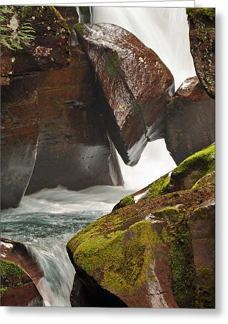 Moss Green Greeting Cards - Avalanche Gorge Whitewater in Glacier National Park 1.1 Greeting Card by Bruce Gourley