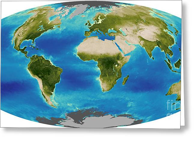 Average Plant Growth Of The Earth Greeting Card by Stocktrek Images