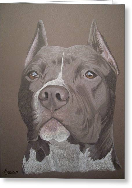 Bully Greeting Cards - Axl Greeting Card by Stacey Jasmin