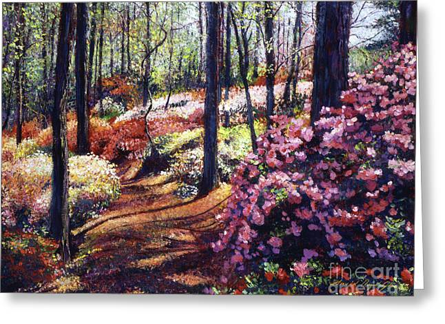 Most Paintings Greeting Cards - Azalea Forest Greeting Card by David Lloyd Glover