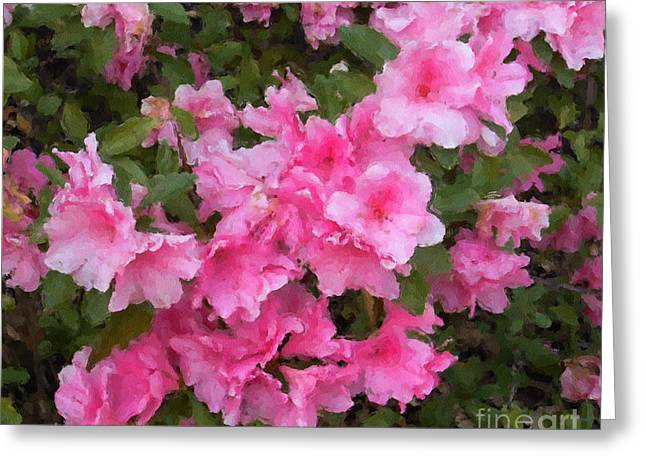 Althea Digital Art Greeting Cards - Azalea watercolor  Greeting Card by Fred Jinkins