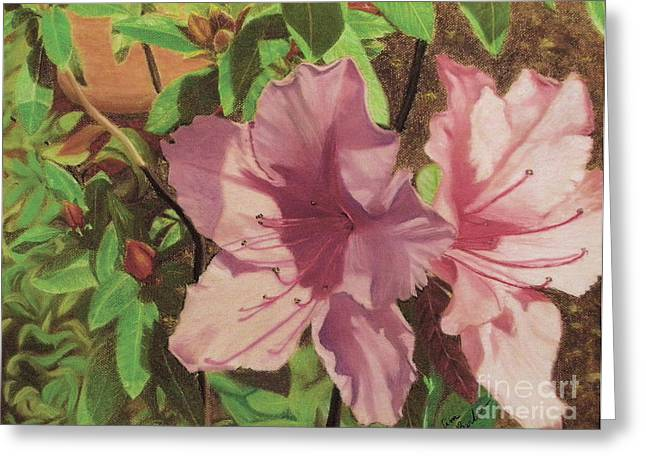 Close Up Floral Pastels Greeting Cards - Azaleas Greeting Card by Jim Barber Hove
