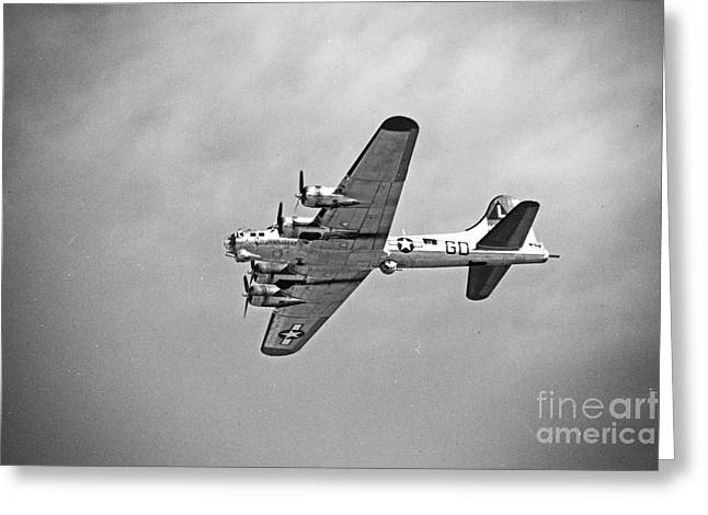 Thanh Tran Greeting Cards - B-17 Bomber - Dust and Scratch Greeting Card by Thanh Tran