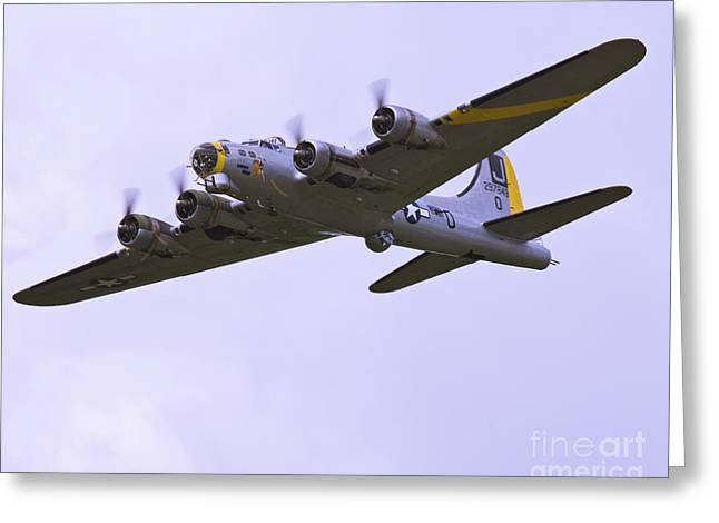 B-17G Liberty Belle approach 8x10 special Greeting Card by Tim Mulina
