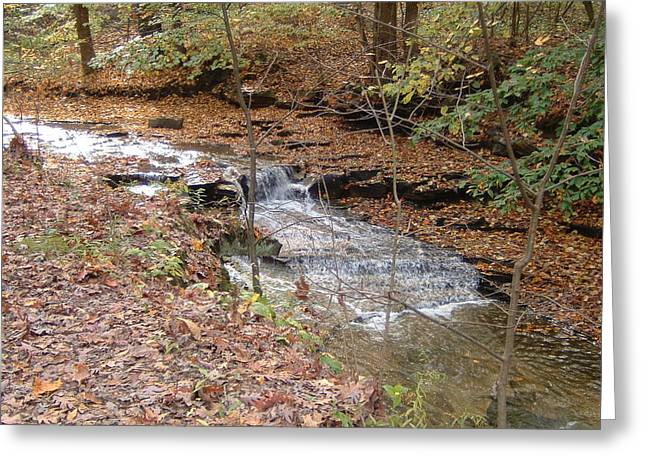 Babbling Greeting Cards - Babbling Brook - Cleveland Metro Parks 1 Greeting Card by S Taylor