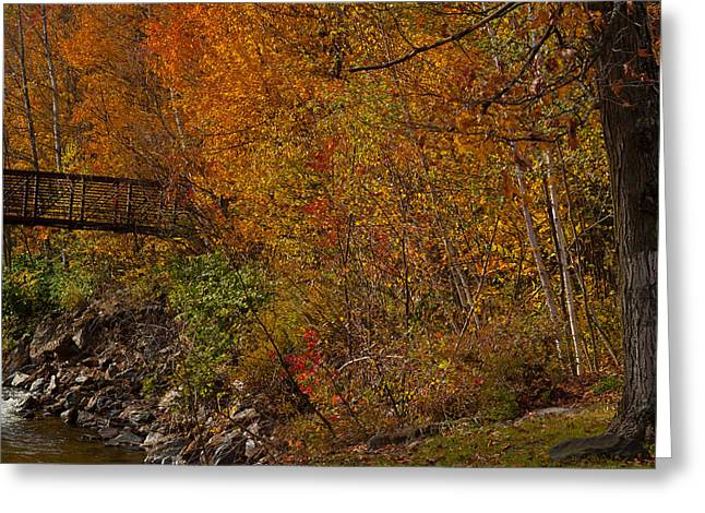 Vermont Photographs Greeting Cards - Babbling Brook Greeting Card by Robert  Torkomian