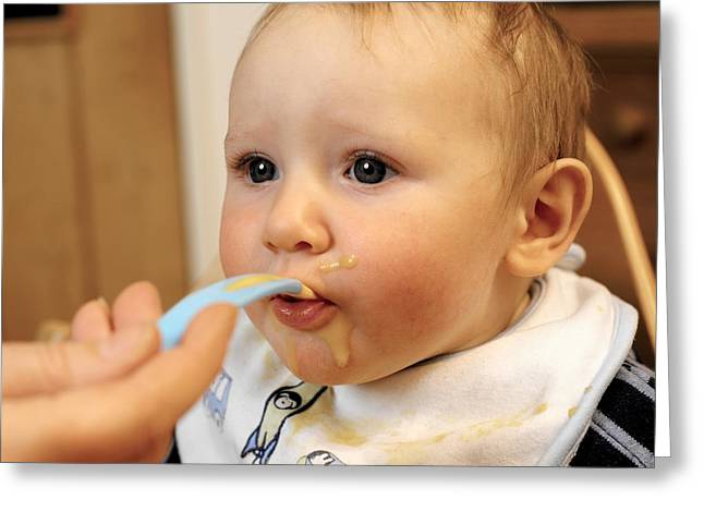7 Months Greeting Cards - Baby Boy Being Fed Greeting Card by Tek Image