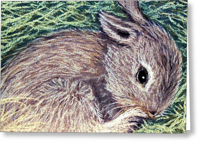 Baby Room Pastels Greeting Cards - Baby Bunny Greeting Card by Jan Amiss