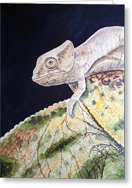 Baby Chameleon Greeting Card by Irina Sztukowski